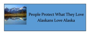 2 Bumper Sticker Protect Love