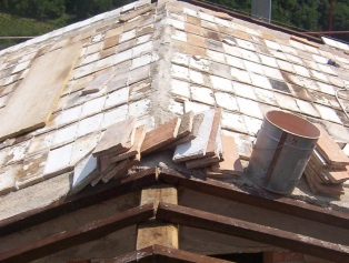 clarepedrick-roof
