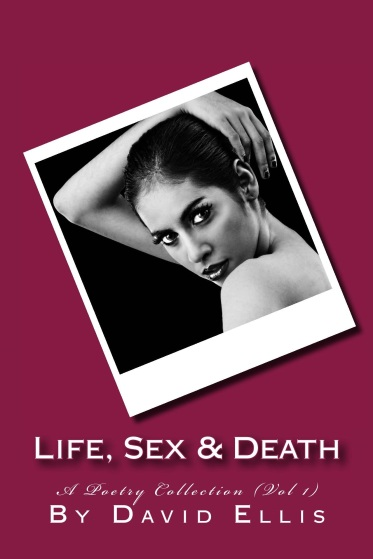 d-ellis-life_sex__death___cover_for_kindle