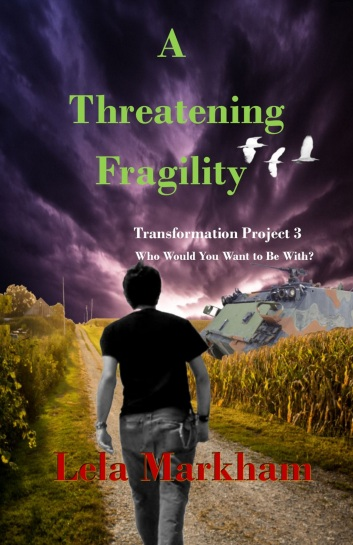 A Threatening Fragility Front Cover