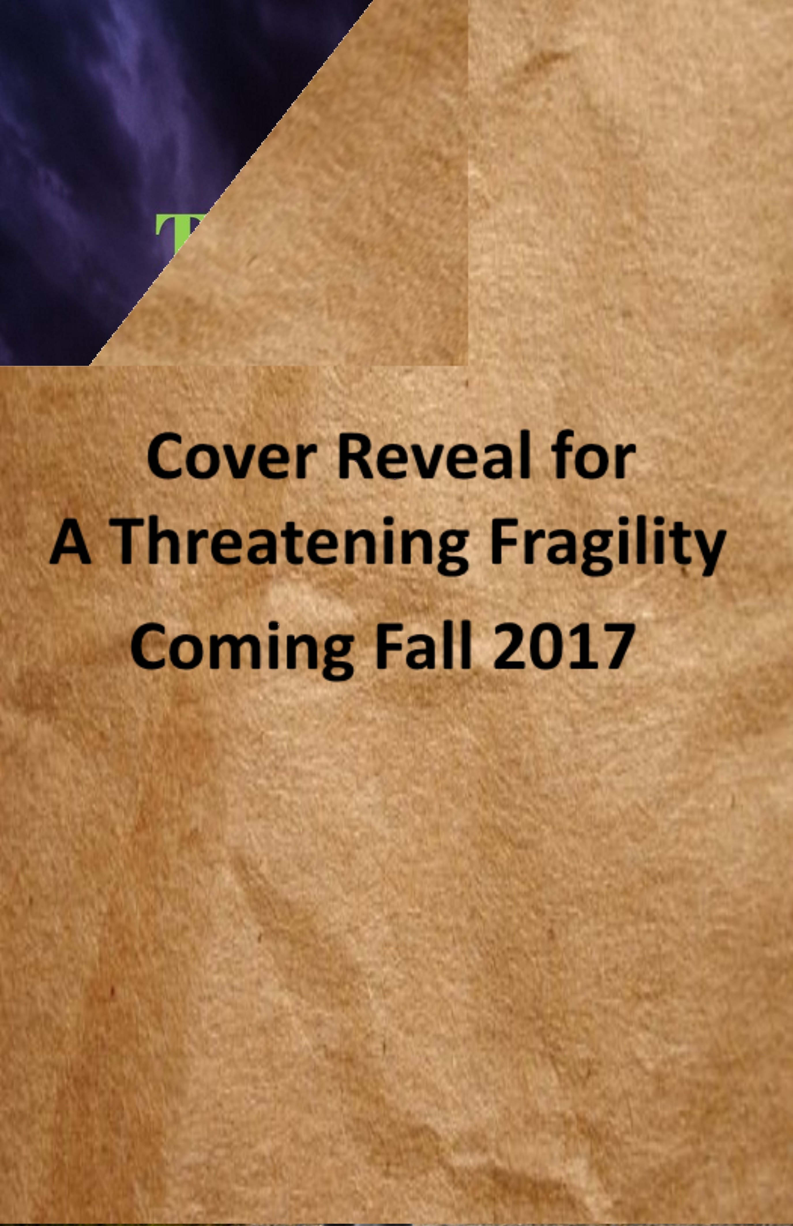 Cover Reveal for A Threatening Fragility 2