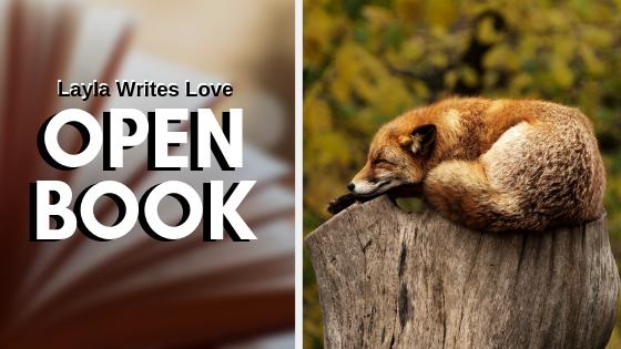OPEN BOOK (3)
